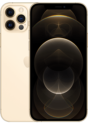 Logo-iPhone 12 Pro Space Gold